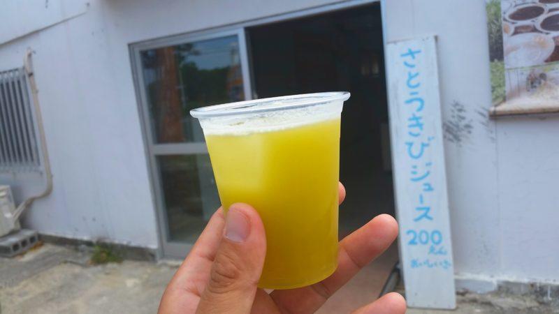 石垣島のおすすめ!グルメ・お土産「南国フルーツジュースのお店」