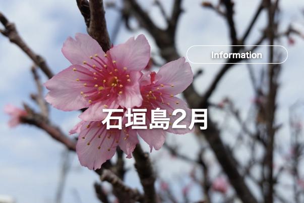 石垣島2月