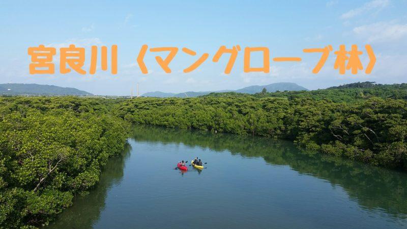 宮良川<マングローブが自生する川>カヌー、カヤックを楽しめる