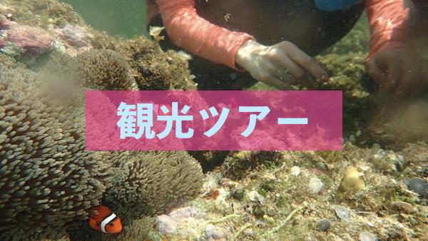 石垣島の観光ツアー!半日・1日でできること
