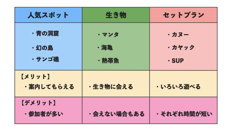 石垣島ツアーシュノーケリングの種類