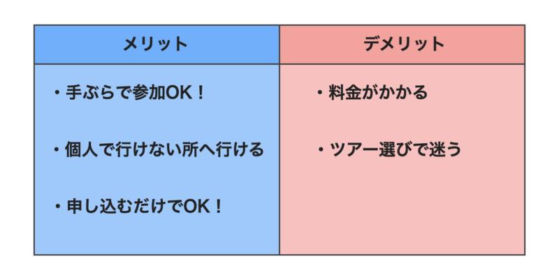 石垣島ツアーシュノーケリングのメリット・デメリット