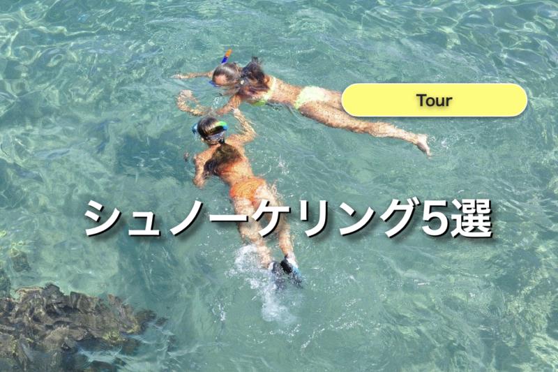 石垣島 シュノーケリング ツアー