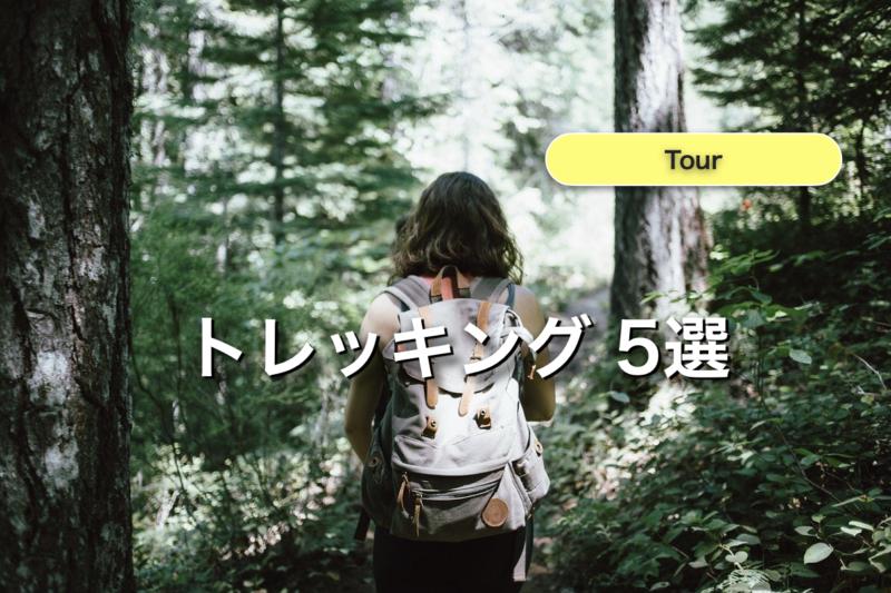 石垣島 トレッキング ツアー 5選