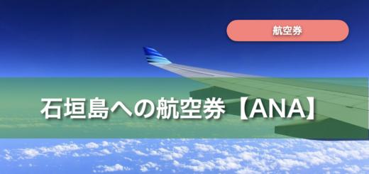 石垣島 航空券 ana