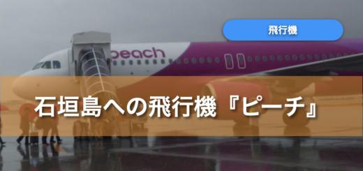 石垣島 飛行機 ピーチ