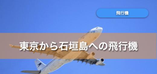 石垣島 飛行機 東京