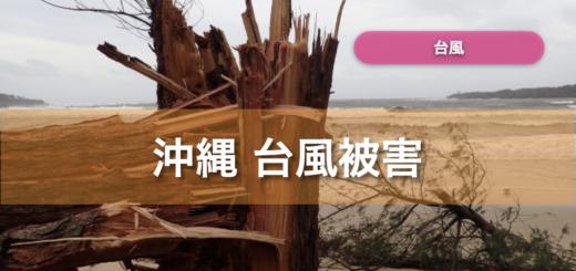 沖縄 台風被害