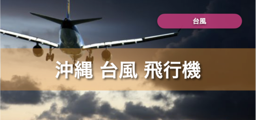 沖縄 台風 飛行機