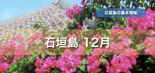 石垣島 12月